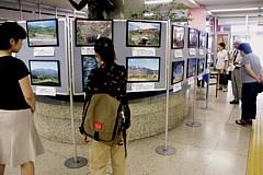 2006/8/8 「みやぎ蔵王三十六景写真展」を区役所ロビーで開催