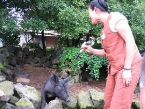 2006/7/19 済州島-観光行政