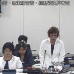 19R1.10.11 決特② 議会・政経・総務費款別審査